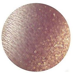 Tammy Tanuka Pigment do powiek 123 1ml