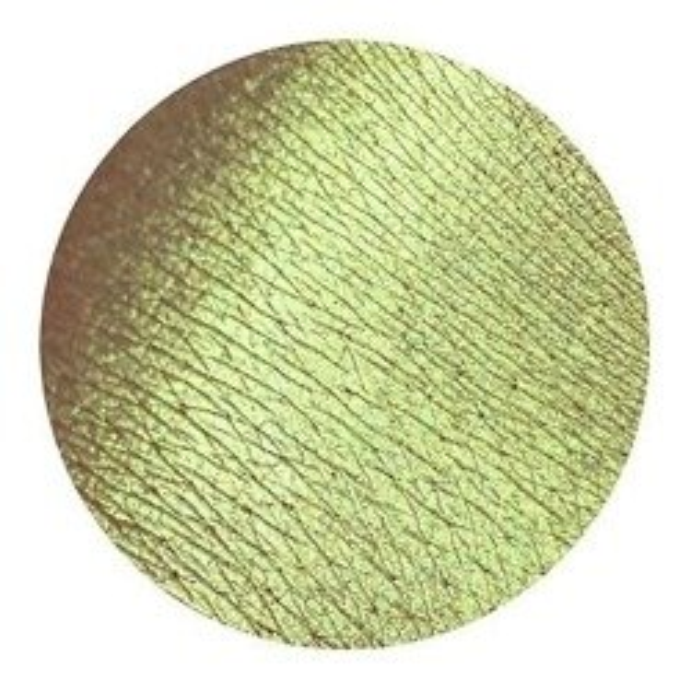 Tammy Tanuka Pigment do powiek 363 1ml